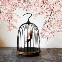 DAQI concept wireless audio light - Cherry Blossom - 606479